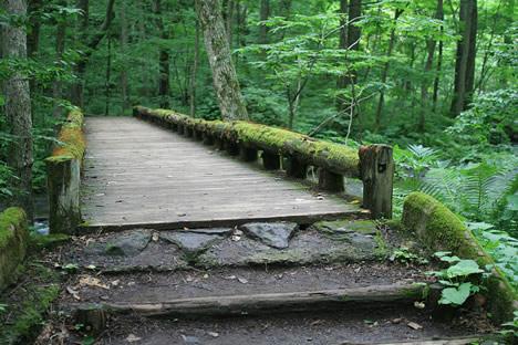 この橋欲しい
