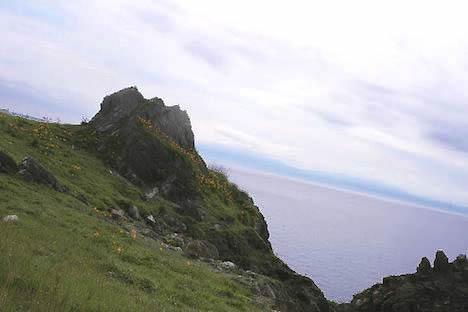 尻屋崎: 崖のお花畑