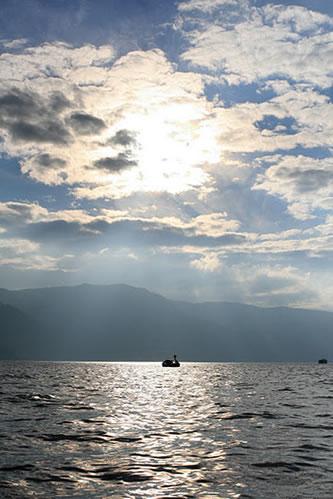 十和田湖: 浮かぶスワン