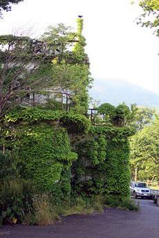 十和田湖畔: ムックの家