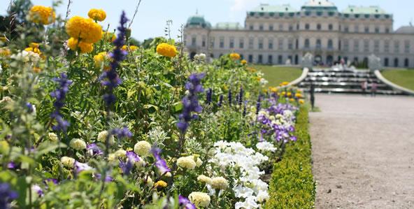 ベルヴェデーレ宮殿庭園の花壇