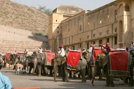 インド・ジャイプル郊外のアンベール城で並ぶ象のタクシーたち