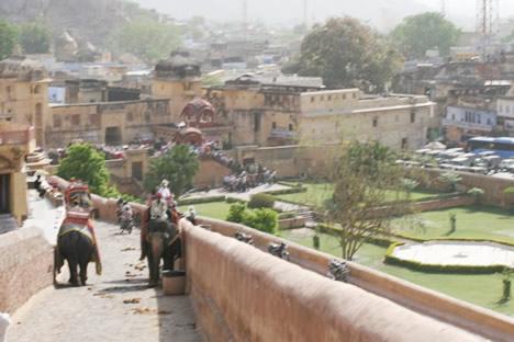 インド・ジャイプル郊外のアンベール城にて象タクシーの通る道と落とし物