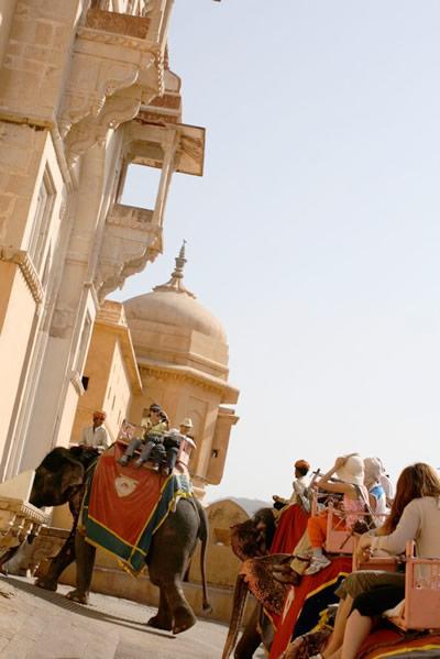 インド・ジャイプル郊外のアンベール城にてお城に入ってゆく象タクシーたち