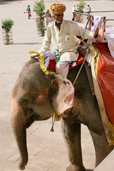インド・ジャイプル郊外のアンベール城にて乗った象と象使いのおじさん
