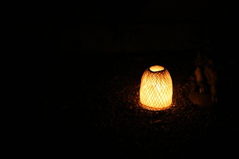 妙心寺東林院の梵燈のあかりに親しむ会、庭の灯り