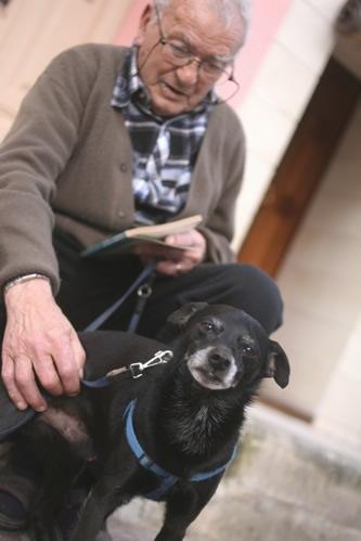 セングレア住民のおじいちゃんと飼い犬