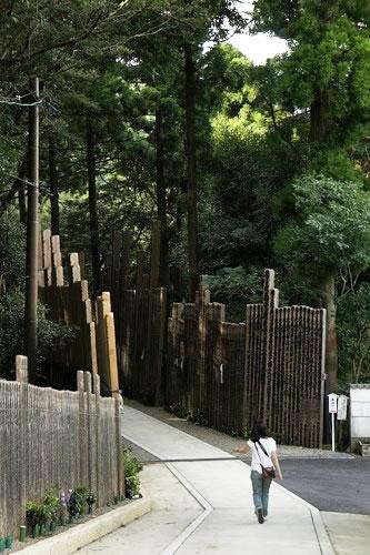 卒塔婆の供養林に入っていくホソミ