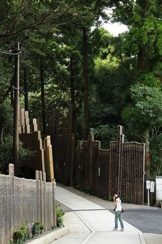 卒塔婆の供養林でこびとになりつつあるホソミ
