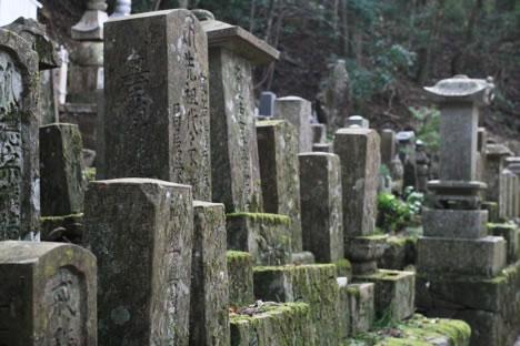 苔むした墓石の列