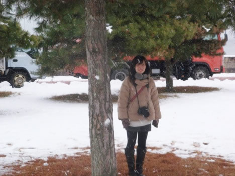 松の下で雪やどり