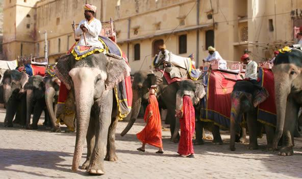 インド北部ジャイプルのアンベール城、象のタクシー乗り場にて